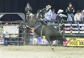 2016 Professional Bull Riders- Brendon Clark...