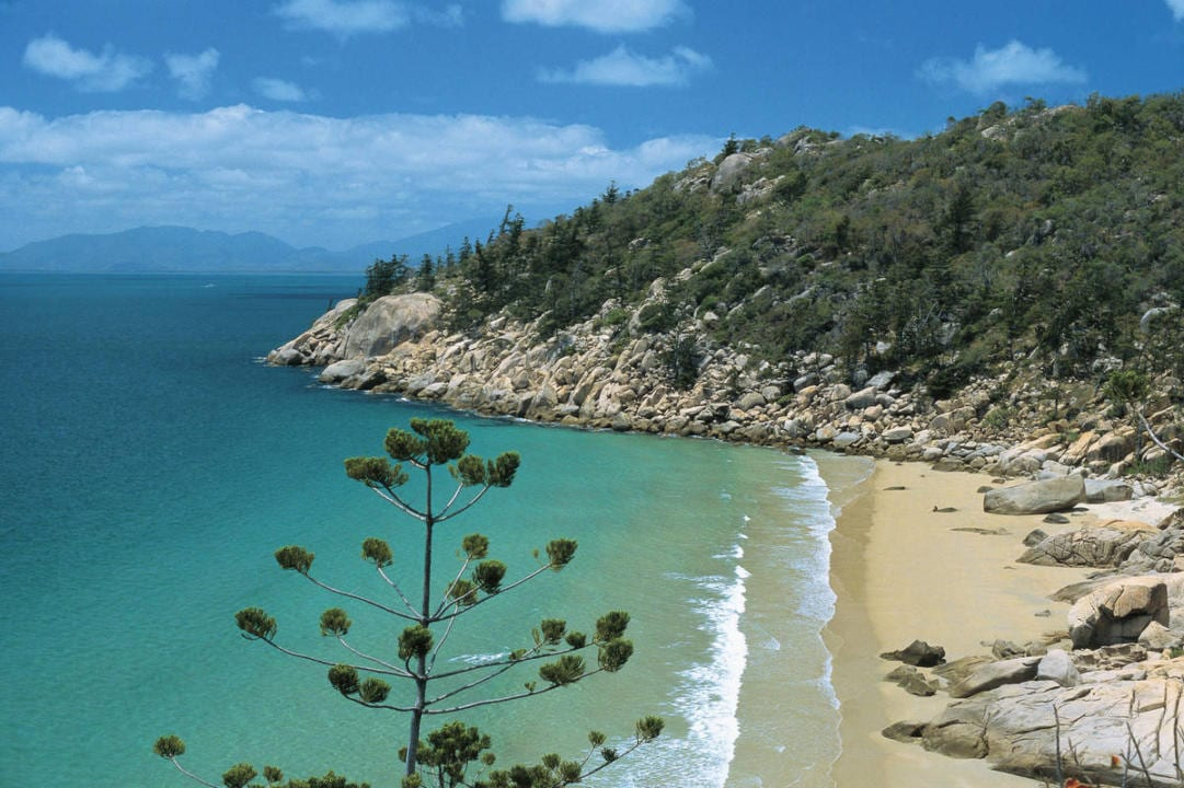 magnetic island for families visiting the great barrier. Black Bedroom Furniture Sets. Home Design Ideas