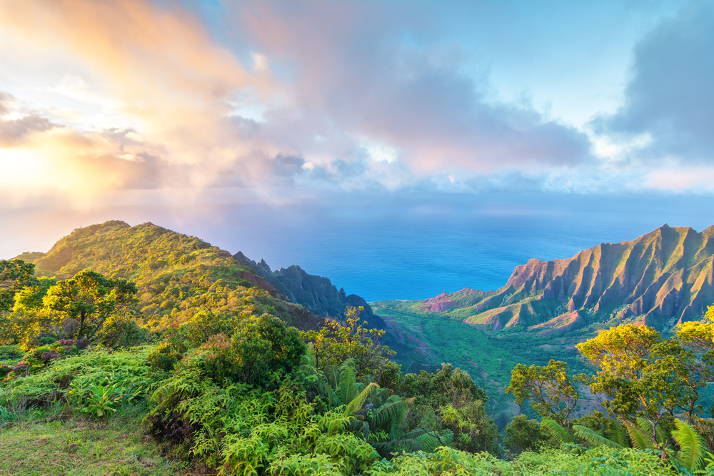 Lilo and Stitch - Kauai, Hawaii