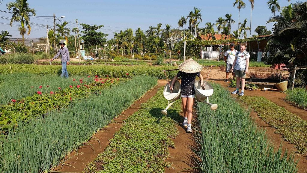 Hoi An Intrepid Tour