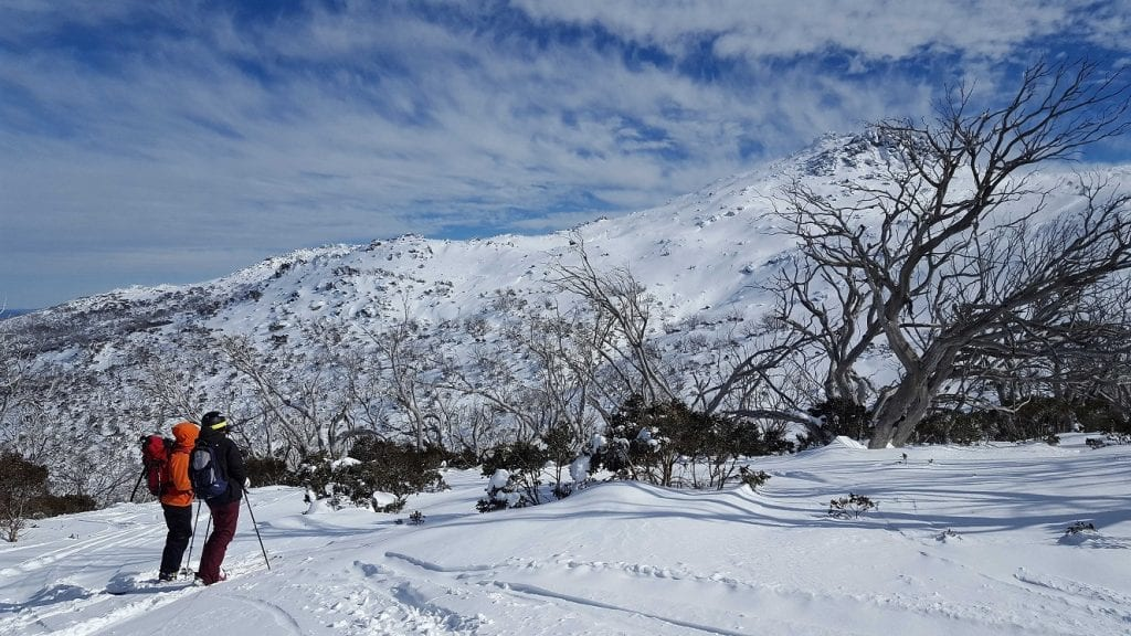 In the valleys of the Snowy Mountains