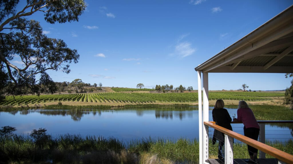family-friendly wineries