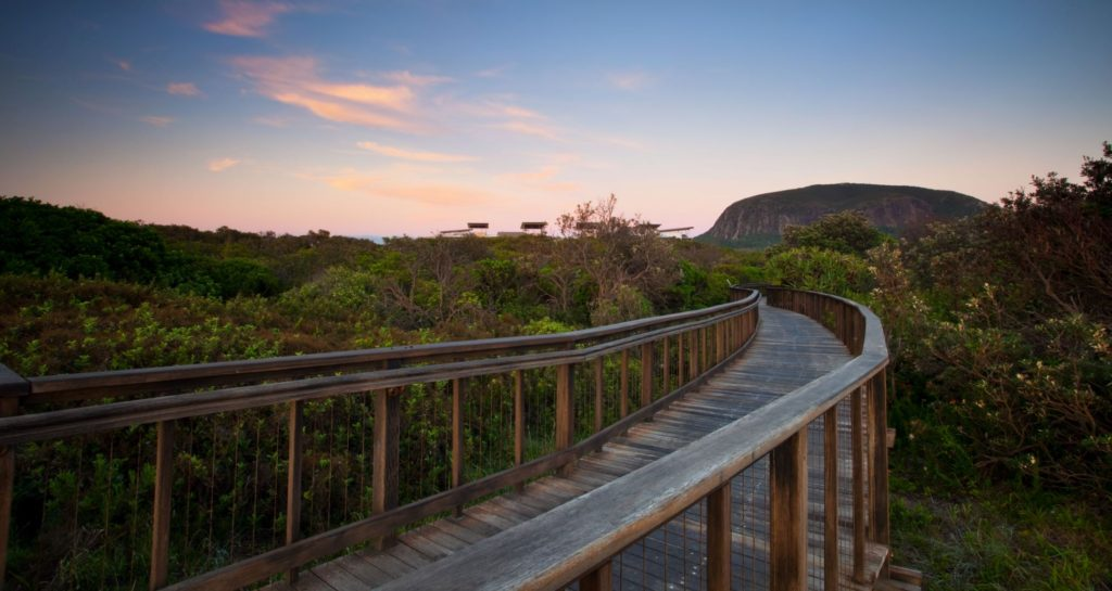Top 10 things to do on the Sunshine Coast this winter