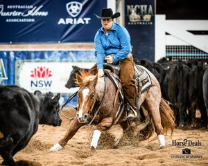Sarah Kennedy and 'Chiselled Cat' with a 212.50pt run in the Equine Performance Medicine Non Pro Derby