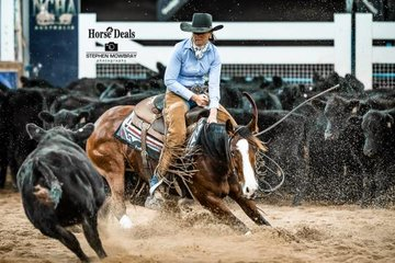 Amelia Servin and 'One Roan Affair' complete the second Herd of the Non Pro Derby 2nd go round