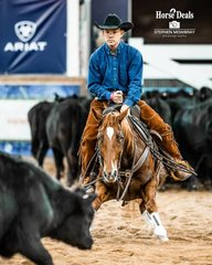 Colin Clancy and 'Casawynk Catman Koo' in the Equine Performance Medicine Non Pro Derby 2nd go round