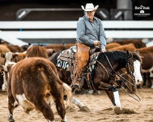 Brett Johns and 'Dee Bar Angel Blue' mark a 207 to take third place in the Final of the Barastoc Amateur Non Pro Futurity