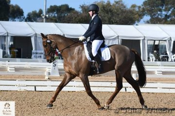 Erika Grant, another rider from Victoria chose the popular Irish breed and is pictured riding her, 'My Acrobat' by ESB Irish Descent during the dressage phase of the Off The Track CCI 1 Star.