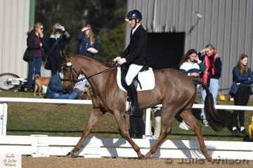 Victorian rider, Daniel Dragt is pictiured aboard , 'Jive Jay' by Jive Magic during the Off The Track CCI 1 Star dressage phase on day two of the 2018 Saddleworld Melbourne International Three Day Event.