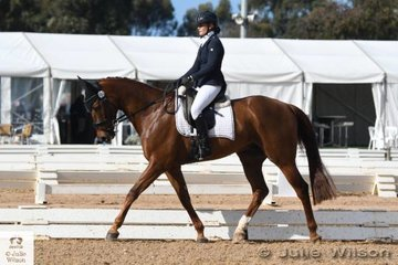 Amy Roberts is pictured riding her typey Budweiser gelding, 'Ionside Strongbow' during the dressage phase of the Off The Track CCI 1 Star.