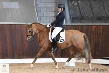 Paige Koliba rode her Victorian bred, 'Loriot Skye's The Limit' to second place in the FEI CDI-Pony Freestyle with 67.067%.