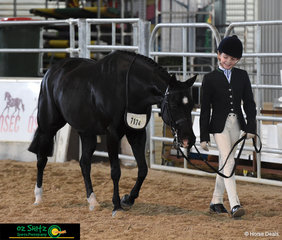 From the Sunshine Coast Grammar School, Mia Doogue exits the arena with Kennallywood Cunningham after completing all three phases of the Primary Show Hunter.