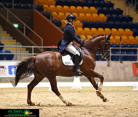 Felicity Shearer and her 17 year old Hanoverian gelding, Blanco Park Wildcard compete Inter 1  Freestyle test on Saturday night.
