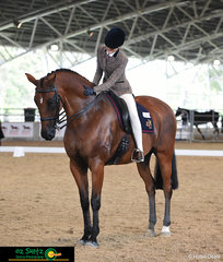 After an impressive workout in the Secondary Show Hunter, Ella Devantier thanks her horse Sed Dominate for putting his best hoof forward.