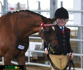 Darby Humphreys' looking chuffed with the led workout with his buddy, Drumeden Musician in the Primary Show Horse.