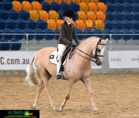 Maya Hoolihan rides her palomino pony Crestwood Royal Design in the Primary Show Hunter on Saturday.