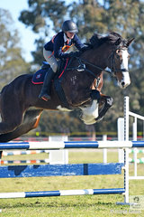Hannah Turner and 'Clarissa' representing  Kurrajong Pony Club and Zone 19 make a good jump during the 13 and Under 15 A Grade AM5. Each age group has two classes today and two tomorrow to determine the 2018 Team and Individual Championships.