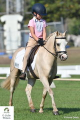 Ashleigh Overall rode the delightful Welsh pony, Glynyarra Park Libretto to equal first in the Preliminary Pony 1.2.