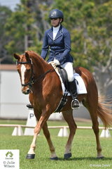 Kirsten Leslie and Dryandri Jazminum look good coming down the centre line in their Novice 2.2 test.