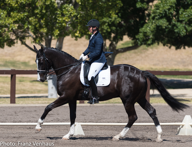 Lizzie Wilson-Fellows on HP Rhodium competing in the Medium Championships in 2017.<br> Photo credit:  Franz Venhaus