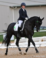 """""""REVELWOOD STEDFAST"""" ridden by Justine Greer in the 4 Year Old Young Horse Class"""