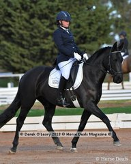 """MELLIZO PARK FURST DANCE"" ridden by.Nicole McOwn in the Novice 2.2"