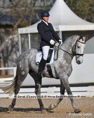 """""""ISLE OF MARLO"""" ridden by Melissa Stevenson in the Elementary Teams 3.3"""