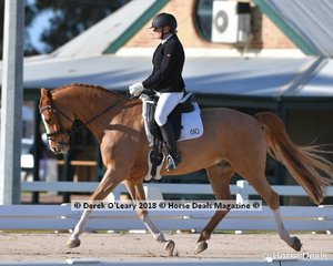"""DUNROBIN SUNDAY BEST"" ridden by .Annemarie King in the Novice 2.1"