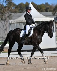 """VOLLRATH DORNKAAT"" ridden by Ellie Holland in the Novice 2.1"