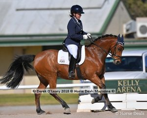 """""""TILLEY PARK TATTLE TALES"""" ridden by Bianca Veneziano in the Novice 2.1"""