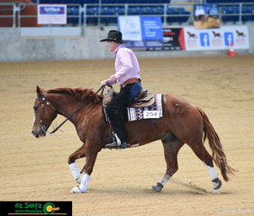 Greg Walker and Ruff N Twisted keep busy in the Novice Horse Open Level 1 and Level 2 at the  Queensland Reining Horse State Championships held at the QSEC.