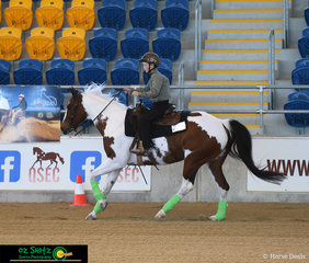 One of QRHA's youth riders, Chase Huff, having fun on his horse Quirran Lea Spinamiss in the Green Rider Level 1 class.