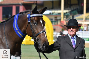 Peter Ewing won the class for Warmblood Mare 3 and 4 Years old with his, 'Avoca Regal Glitzen' (Rathowen Regal Banquet/Avoca Troppen Glitzen).