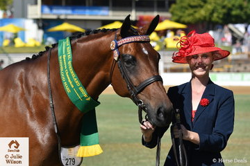 Katrina Christensen did the honours with her own, 'Livin' The Dream' (Hilltop Monarch/Zazu) to take out the Warmblood Mare Reserve Championship.
