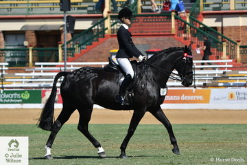 Ashley Cavanagh's, 'Luna Star' (Laurie's As/Elite Galaxy) took third place in the class for Warmblood Under Saddle.