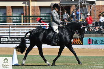 Emily Wonka rode her own and Tony Rodgers-Falk's, 'Dicavalli Diamonds' (Donatraum/batten Belle Star) to take second place in the class for Warmblood Under Saddle.