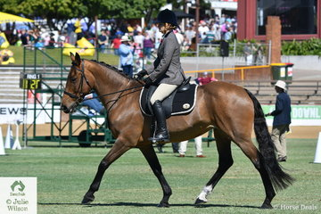 Natalie Hall's, 'Clayton Snippet' took second place in the class for Waler Under Saddle.
