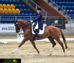 Remi Lady Locksley struts her stuff with Melissa Van Den Berge in the saddle competing in the Open Intermediate 1..