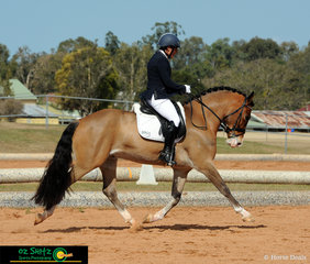 Toni Webb and Salient Park Telynor were very consistent with all their tests over the three days of the Queensland State Dressage Championships.