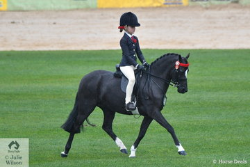Kerry Halliday's, 'Dalbrae Vegas' took fourth place in the class for Novice Pony N/E 12hh.