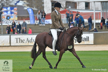 Kate Halliday rode, Brodie Kittle's, 'Braeside Royal Occasion' to win the class for Novice Show Hunter Pony 12.2-13hh.