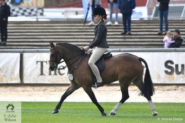 Kylie Herbut's, 'Rivington Marco Polo' took third place in the class for Novice Show Hunter Pony 12.2-13hh.
