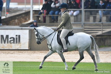 Leanne Maynard's, 'Westbury Eye Of The Storm' was sixth in the class for Novice Show Hunter Pony 12.2-13hh.