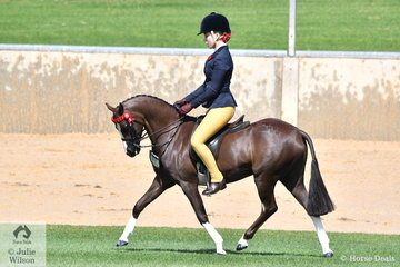 Well performed Victorian young rider, Izabella McIntyre rode Blaine Perkins', 'Mirinda Boy Toy' to take second place in the class for Novice Pony 12-12.2hh.