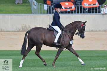 Jackie Anderson's, 'Silkwood Ribbons' puts her best foot forward on her way to fourth place in the class for Novice Pony 12-12.2hh.