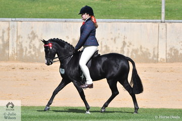 Aisha Heinrich's, 'Thorwood Tin Soldier' took fifth place in the class for Novice Pony 12-12.2hh.