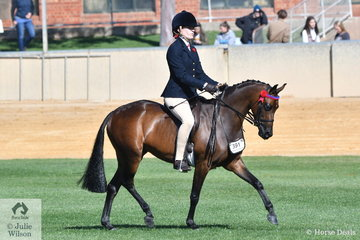 Sabrina Jaeschke, back in winning form after an absence from the Royal, rode, Delia Fogden's, 'Rosette Queen Of Sefton' to win the class for Novice Pony 13-13.2hh.