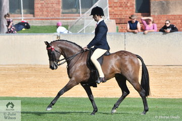 Ty Zootjens rode Shayleigh Joblin's, 'Maxwell Matador Royale' to third place in the class for Novice Pony 13.2-14hh.