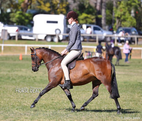 "Broni Sams and ""Bamborough Samba"" they placed 2nd in the Open Show Hunter Pony 12-12.2hh class."