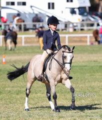 "Wynter Schultz riding ""Athono Milo"", they placed 2nd in the Open Show Hunter Ponynot exceeding 12.2hh class."